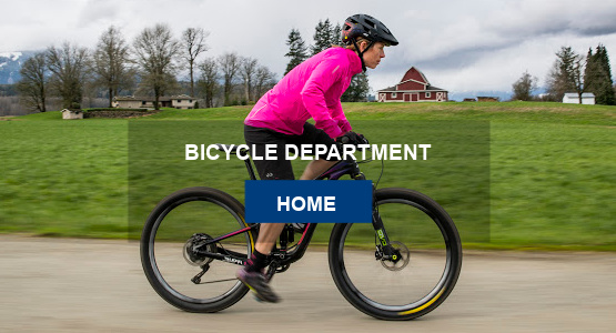 Farina's Bicycle Department Home Page
