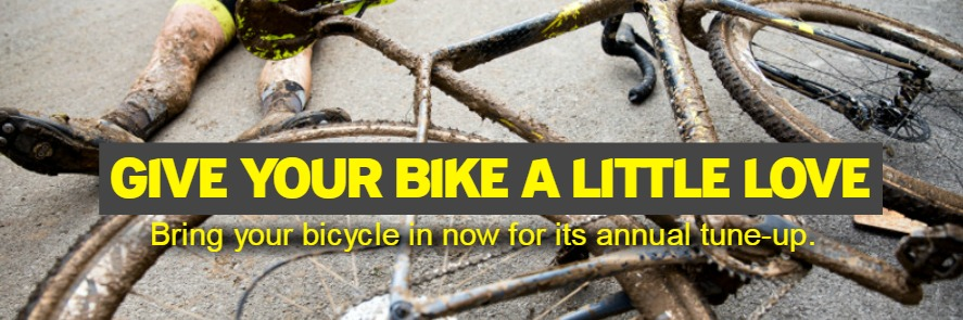 Bike Repairs and Service