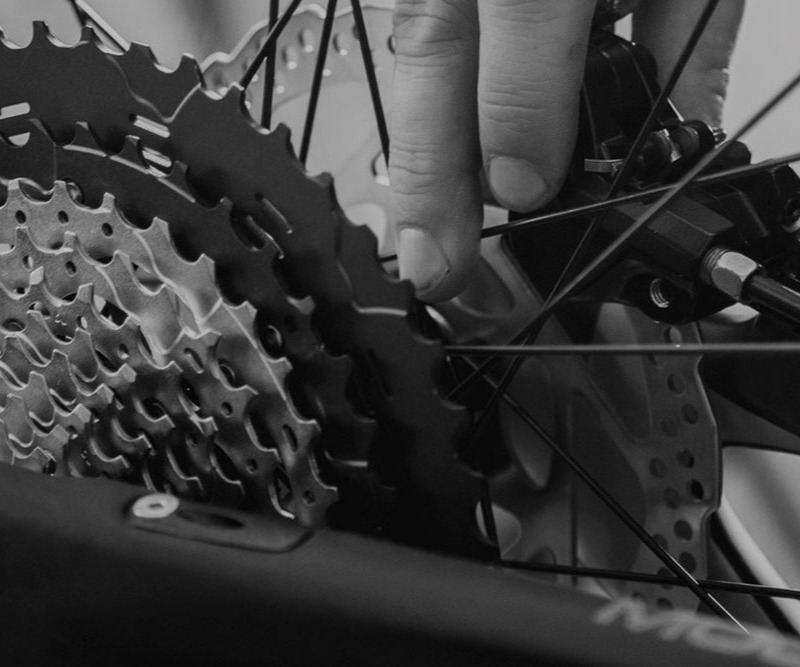 Bike Repairs & Tune-ups - Louisville