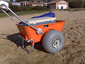 Rental Items Beach Cart