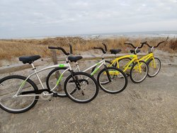 Rental Items beach cruiser